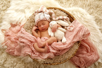 Scarlett Newborn Session