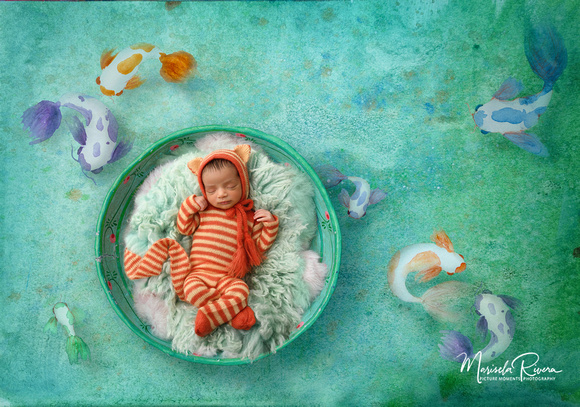 Kitty's Koi By Marisela Rivera Photographer with Picture Moments Photography