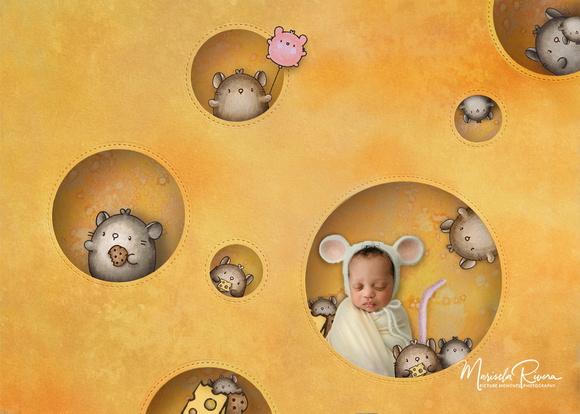 cheese.mice Picture Moments Photography Newborn Composition By Marisela Rivera Photographer